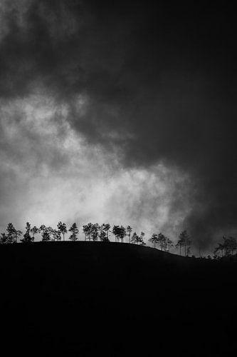 Foggy Hill von Insolitus Fotografie