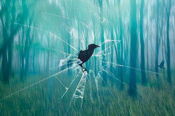 The Raven sur Jeannette Penris