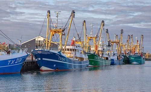 Texel Kutterflotte.