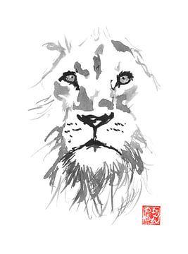 lion sur philippe imbert