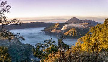 Zonsopkomst bij de Bromo vulkaan op Java, Indonesië van Reis Genie
