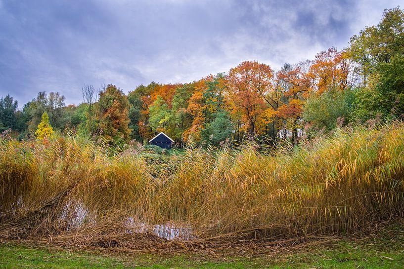 Herfst landschap van Eriks Photoshop by Erik Heuver