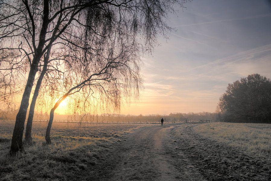 Winters landschap van Marloes van Pareren