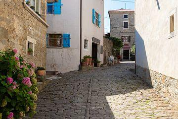 Altes Dorf in Kroatien von Jeroen de Weerd