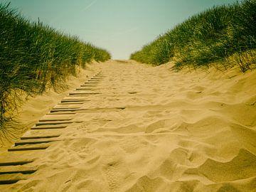 sandyroad van Lex Schulte