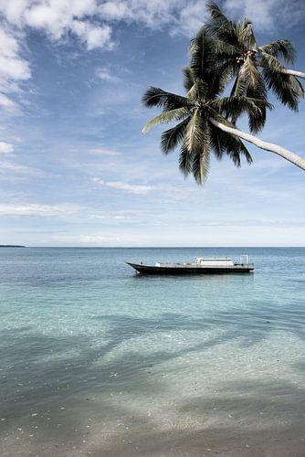 Varen langs een tropisch eiland | Indonesië