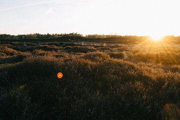 Zonsondergang Gasterse Duinen van Rob Veldman