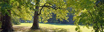 Kasteelpark van Laxenburg van Leopold Brix