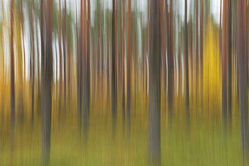 Abstracte herfst van Willemke de Bruin