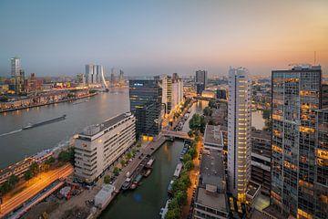 Ansichten Roter Apfel von Prachtig Rotterdam