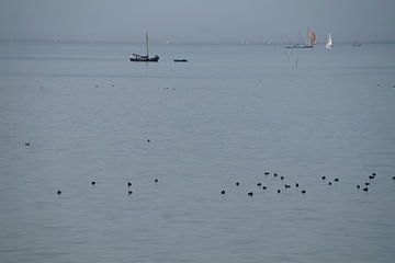 IJsselmeerblau raffiniert mit Booten und Vogelpunkten gefärbt von wil spijker