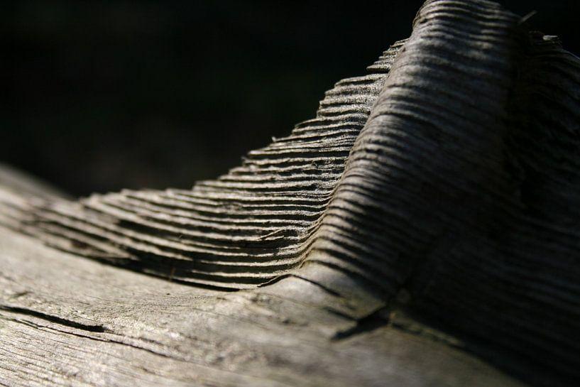 Wood van Nils Dekker