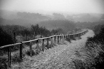 Sandy path through the dunes van Yana Spiridonova
