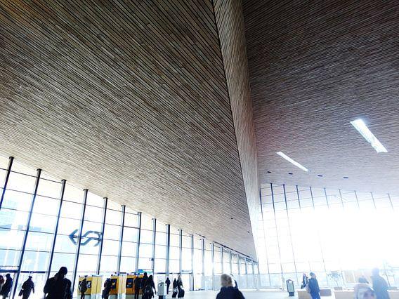 Rotterdam Centraal - Aankomsthal 6