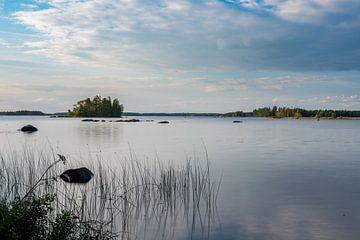 Uitzicht over Åsnen in Zweden von Lenslicht Fotografie