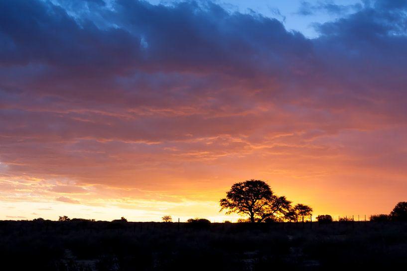 African sunset 03 van Studio voor Beeld