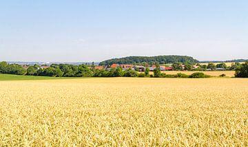 Dorp met graanveld van Achim Prill