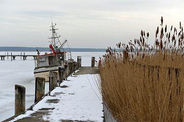 Bevroren boot in de Oostzee van Alphapics