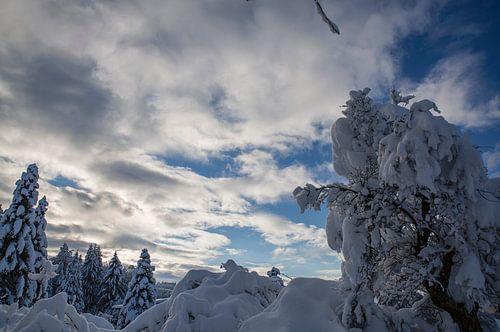 Winterlandschaft mit Himmelswolken im Winter