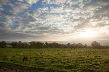 Sunrise in the Ardennes von Erik van Rosmalen