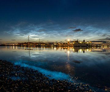 Zeevonk met lichtende nachtwolken van Marjolein van Roosmalen