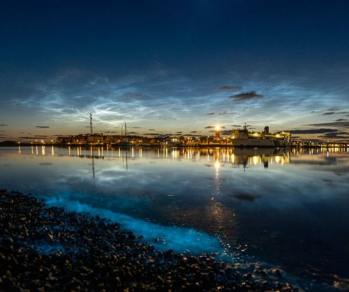Zeevonk met lichtende nachtwolken