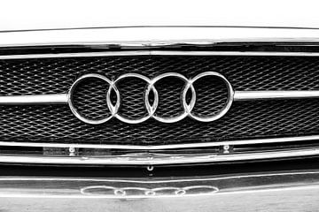 Audi von Elles Rijsdijk