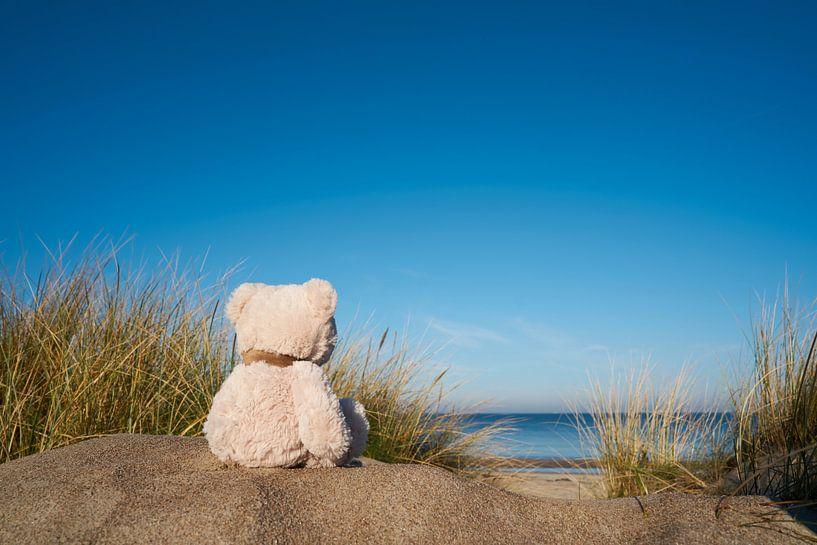 trauriger Teddybär mit Fernweh am Strand von Warnemünde von Heiko Kueverling