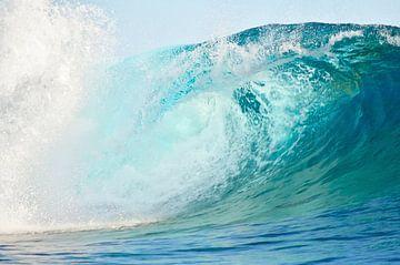 Surf golf in de branding in de Pacific