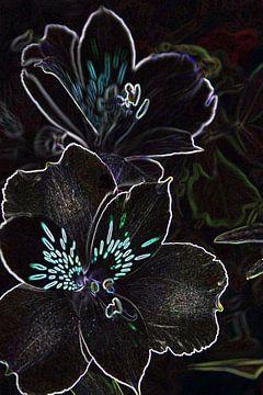 Bloemen  von Monique Brouwer