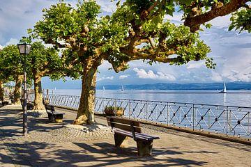 Au lac de Constance sur Reiner Würz / RWFotoArt