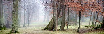 Fog in a spa park van Leopold Brix