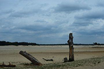 Een zandverstuiving op de Veluwe van Gerard de Zwaan