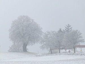 Winterlandschaft sur