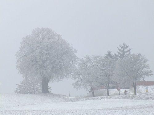 Winterlandschaft von