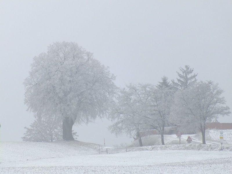 Winterlandschaft von Ilona Picha-Höberth
