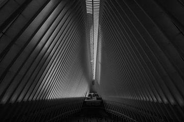 Oculus - Schwarz und Weiß von Jan-Hessel Boermans