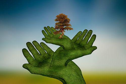 Schützende Hände (2) von