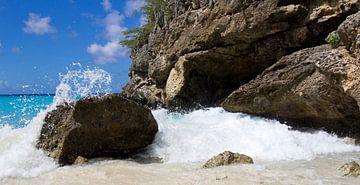 Tropisch eiland... van Bert - Photostreamkatwijk