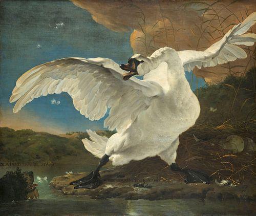 De bedreigde zwaan, Jan Asselijn
