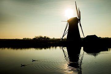Windmolens in Kinderdijk tijdens zonsondergang van