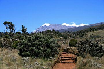 Kilimanjaro van Gert-Jan Siesling