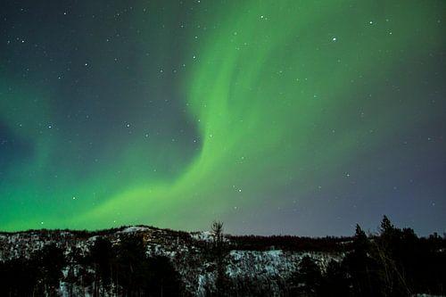 Norderlichter von Ymala Antonsen