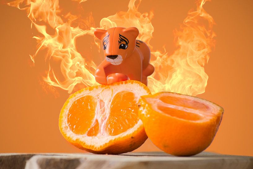 Oranje van Sven Wildschut