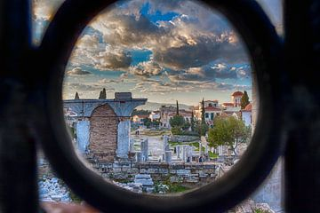 Athene door het hek sur Bert Jan Hobbeling