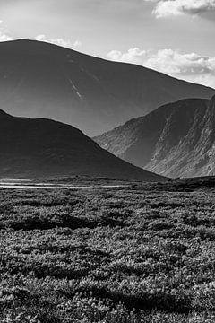 Bergstapel in Jotunheimen, Noorwegen - Zwart-Wit van Wouter Loeve