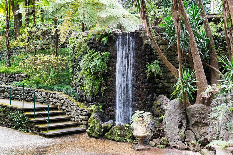 waterfall in tripcal garden Monte Madeira sur ChrisWillemsen