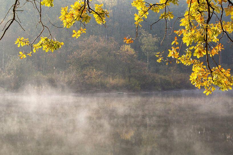 Herfstkleuren  bij een meertje in het bos van Paul Wendels