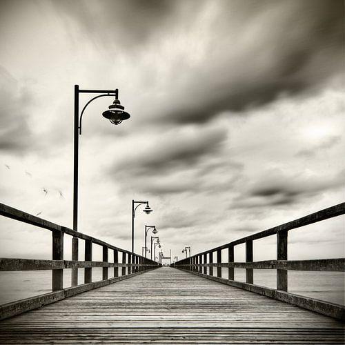 Seebrücke mit Möven van