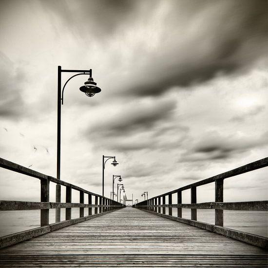 Seebrücke mit Möven van Mario Benz